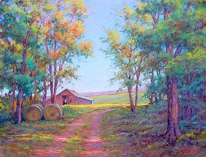 Beyond the Barn by Jean Terry