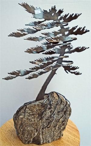 Dancing Pine, 3106