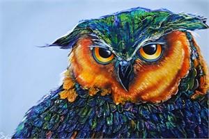 Owl 185253, 2018