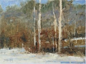 Trees near Blue Ridge by John Stanford