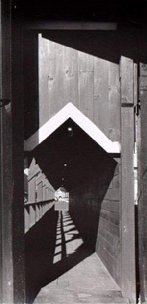 Sidewalk Construction, c. 1960