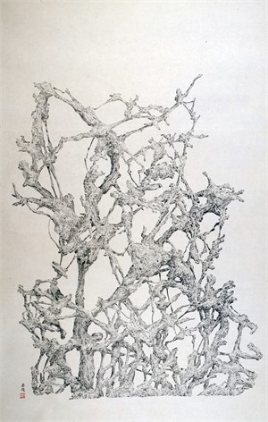 Root, 2007