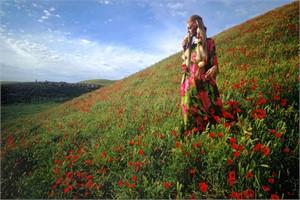 Afghanistan: Poppies near Kunduz (Edition 13/100)