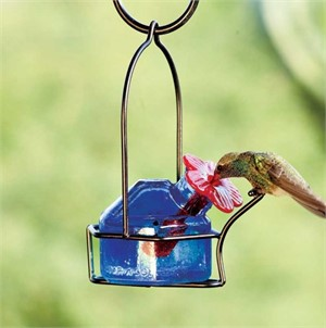 Hummingbird Feeder - 3oz Lunch Pail 1 Assorted