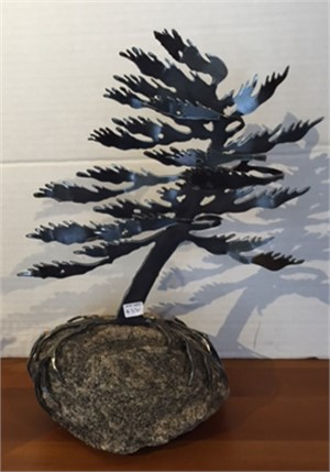 Windswept Pine #0547