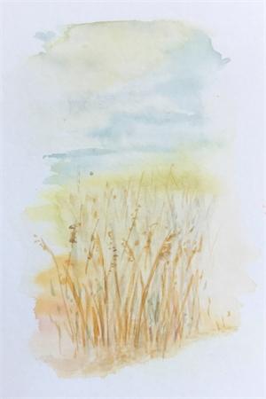 twenty-four by Anna Murphy