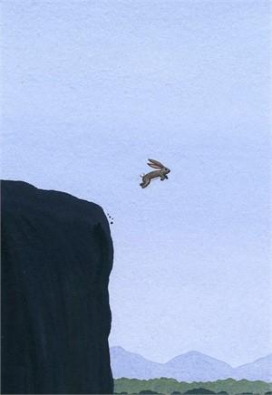 Rabbit Takes Leap