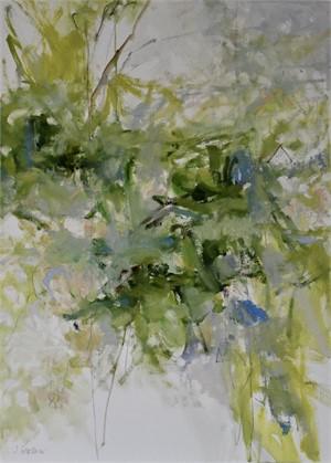 Oak Leaf Hydrangea, 2019