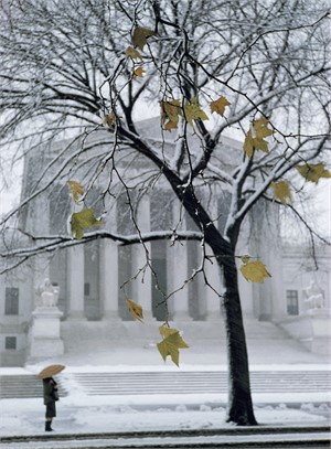 Supreme Court - West Front in Winter