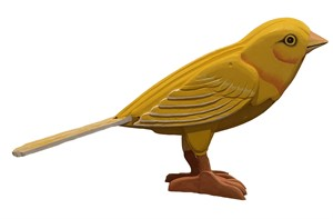The Canary, 2018