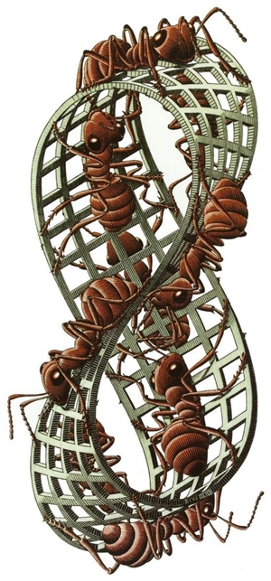 Mobius Strip II (Red Ants), 1963