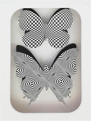 Butterflies Op Art Series, 2018