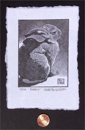 Rabbit (15/40)