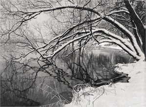 Winter Reflections, 2013