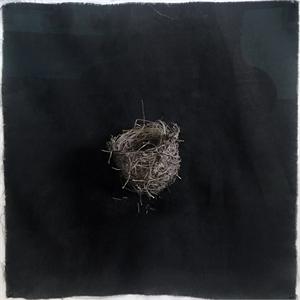 Nest #17, 2020