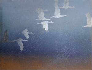 Southern Flyway, 2010