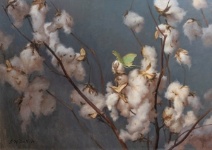 Cotton Branches and Luna Moth