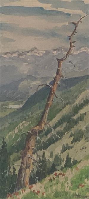 From Hoosier Pass
