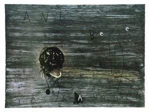 Ant Bee Tarantula (21/20), 1998