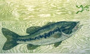 Largemouth Bass (4/6), 1998