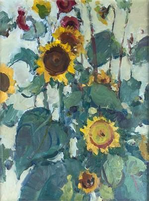 Edible Sunflowers