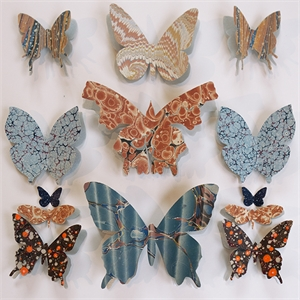 Butterfly Series, 2020