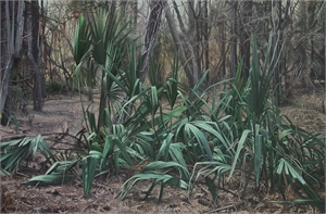 Gathering of Palmettos, 2019