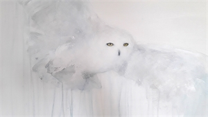 Snow Owl III, 2019