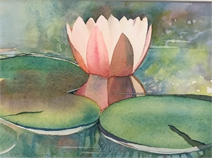 Water Lily Study #1