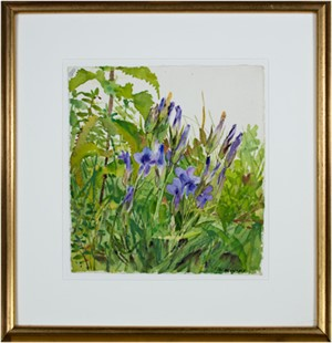 Fringed Gentians, 1968