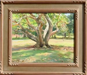 Under the Camphor Tree