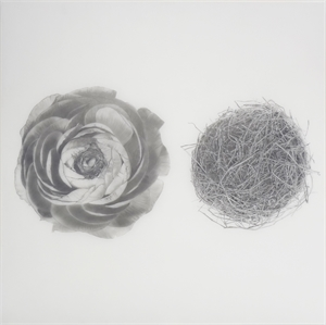 2 Circular Objects