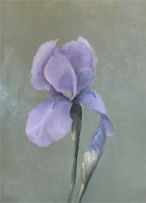 Iris, 2018
