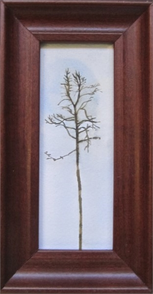 Tree #168