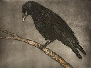 Crow, 2018
