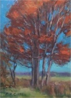 Fall Trees, 2019