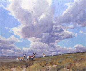 Capricious Skies (Antelope), 2015