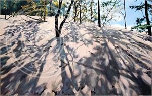 Leeward Dune
