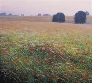 Misty Morning Prairie