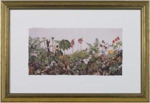 Spring Wildflowers, 2006