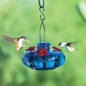 Hummingbird Feeder - Bloom Calliope Asst. Colors