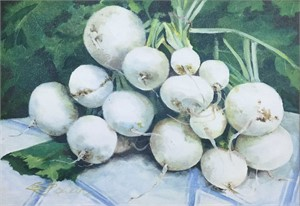 White Turnips