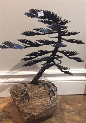 Dancing Pine, MA000674