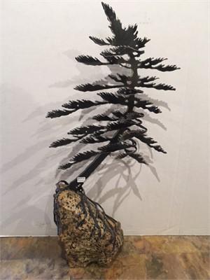 2 Tree A 3592, 2019