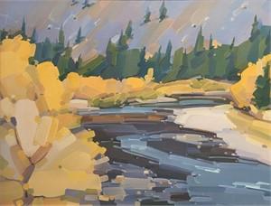 Poudre Riverscape