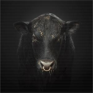 Black Bull (1/10), 2019