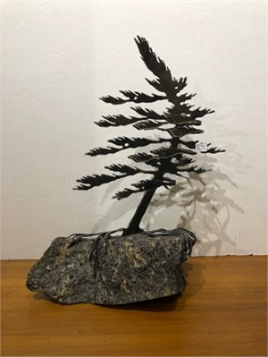 Dancing Pine, 3108