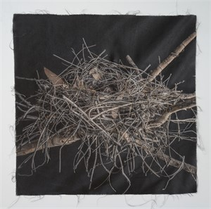 Untitled Nests #11 (1/20), 2018