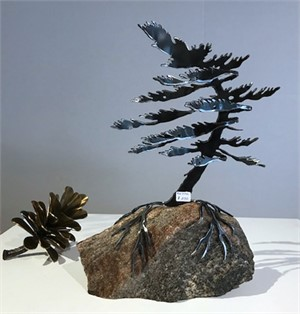 Windswept Pine 3403