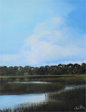 Myakka Marsh and Grasses
